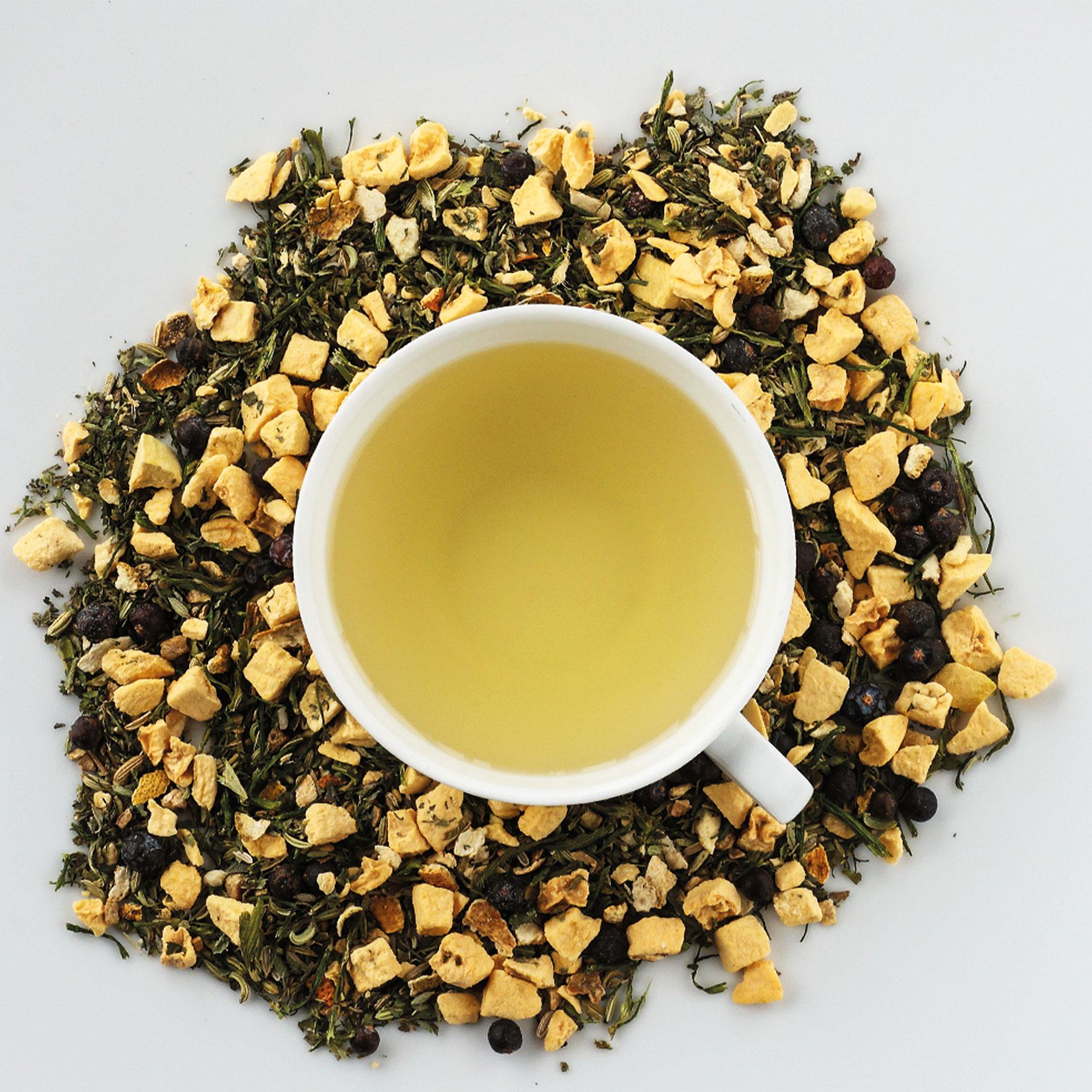 Bio Tee Hot n' cool peach DINZLER Teeselektion